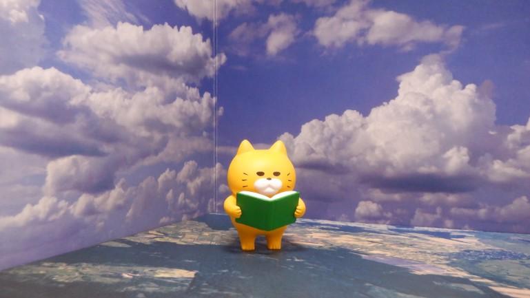 セリア背景ボード 空 猫