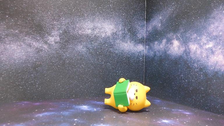 セリア背景ボード 宇宙 猫