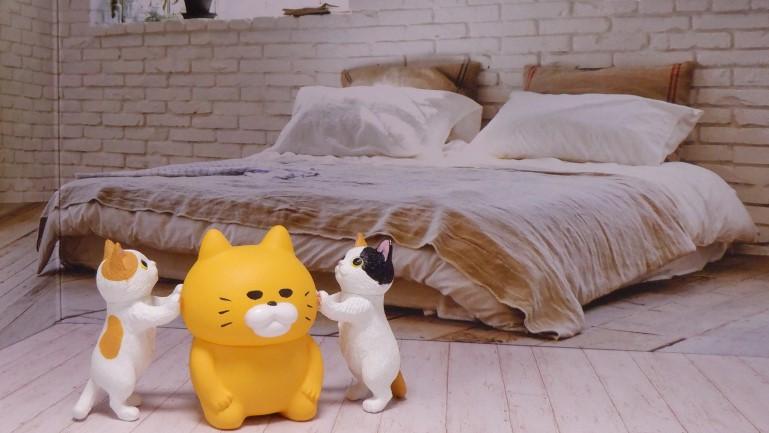 セリア背景ボード 洋室 猫