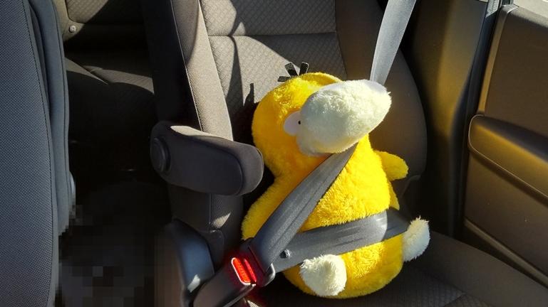 シートベルト圧迫感 コダック